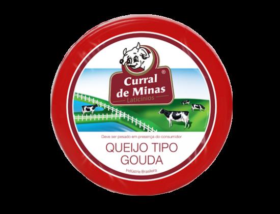 Queijo-Prato-Gouda